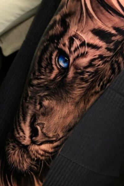 oeil de tigre bras