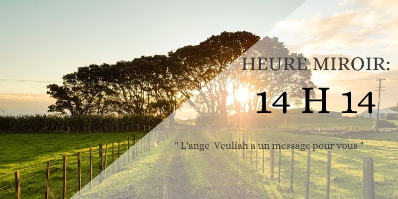 message 14h14