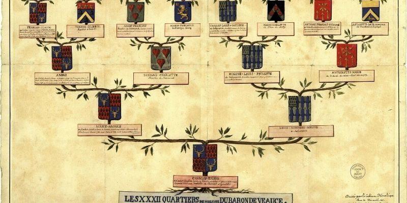 arbre de vie généalogique