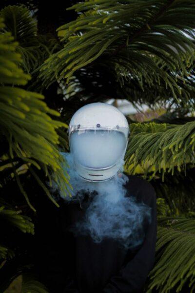 protection fummé nature