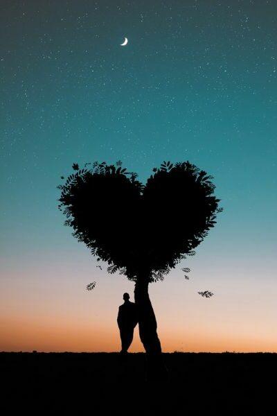 arbre en coeur d'amour