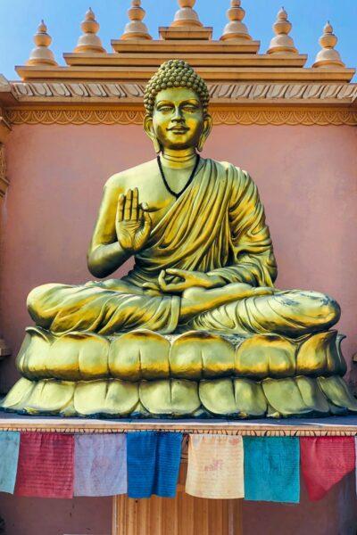 sagesse de bouddha