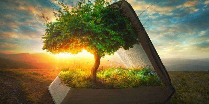 histoire de l'arbre de vie