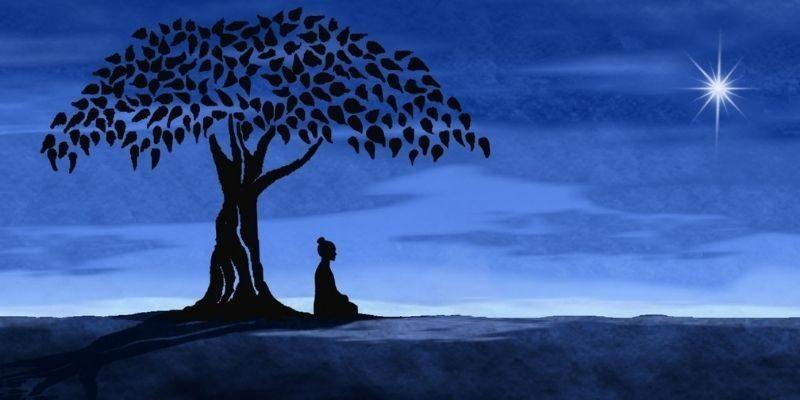 illumination de bouddha sous l'arbre de vie